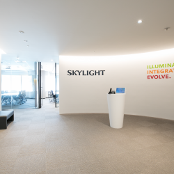 Skylight Consulting Inc.